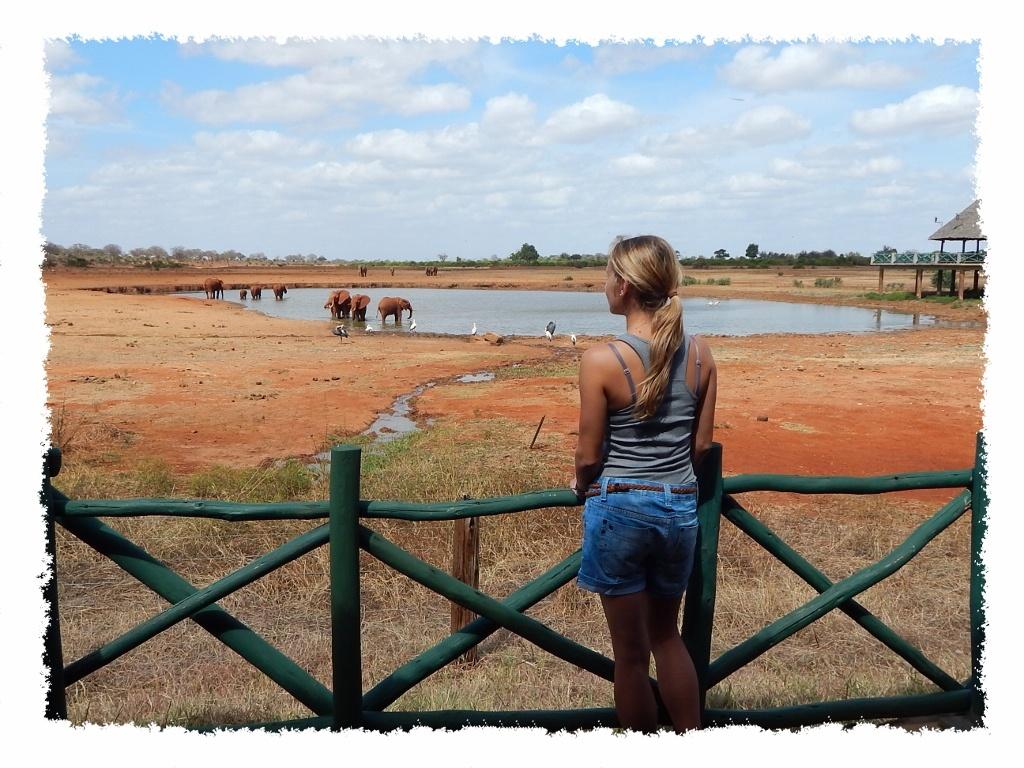 Hannah auf Terrasse im Tsavo East Nationalpark, Kenia