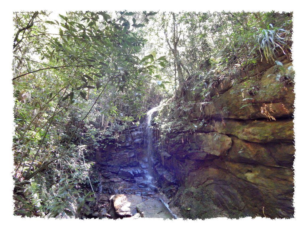 Cachoeira das Almas im Tijuca Nationalpark in Rio de Janeiro