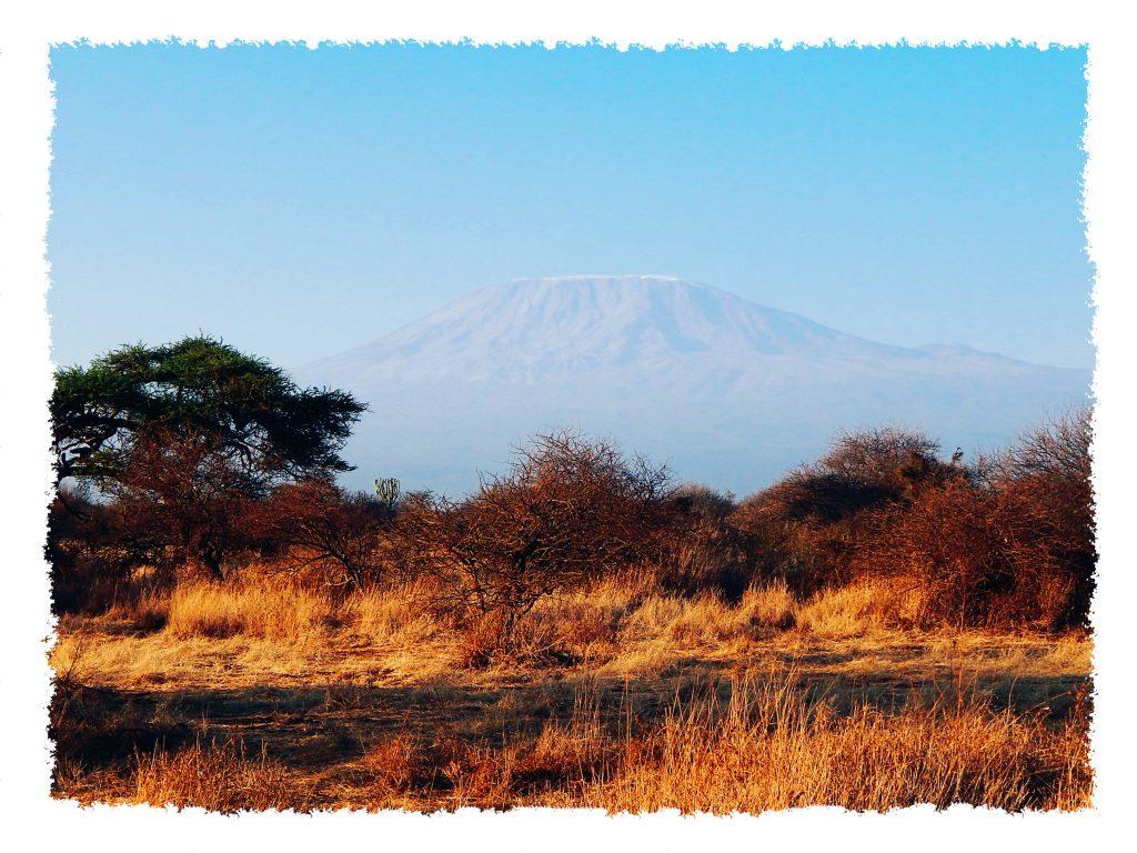 Amboseli Nationalpark - Kili