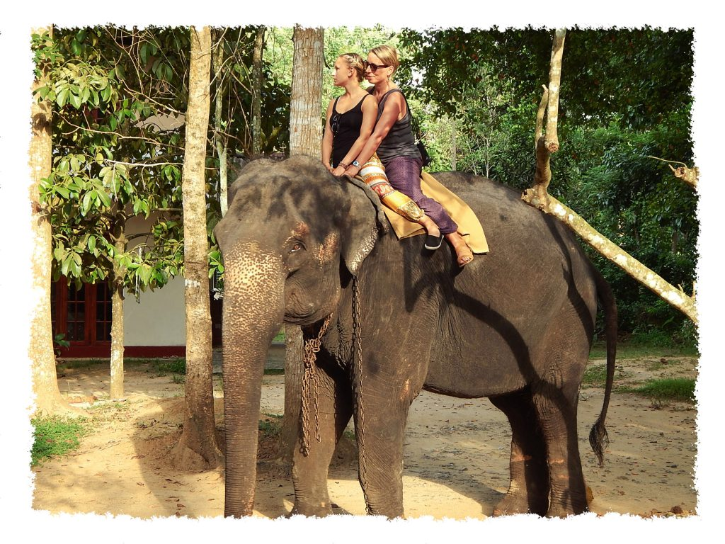 Reisen mit Mama auf Sri Lanka