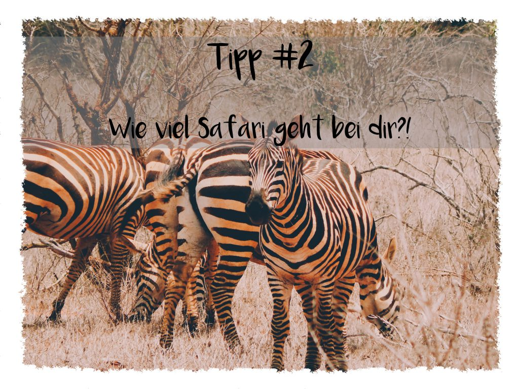 Reisetipps für Kenia - Wie viel Safari geht bei dir