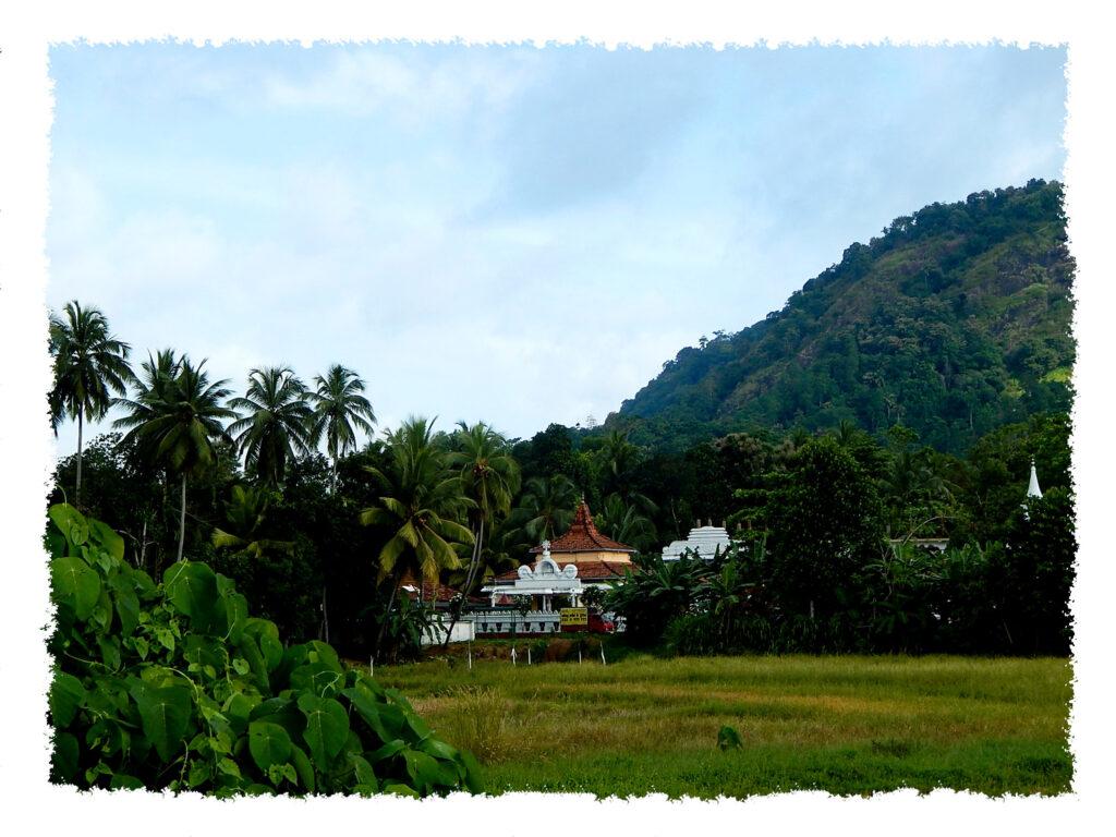Sri Lanka - Hochland