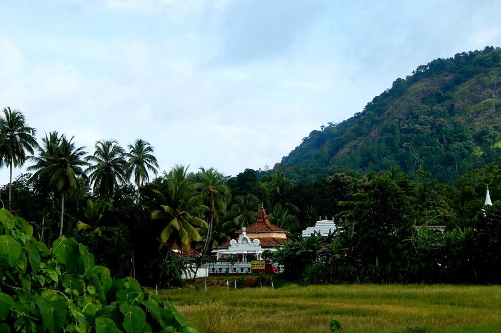 Süden Sri Lanka - Hochland