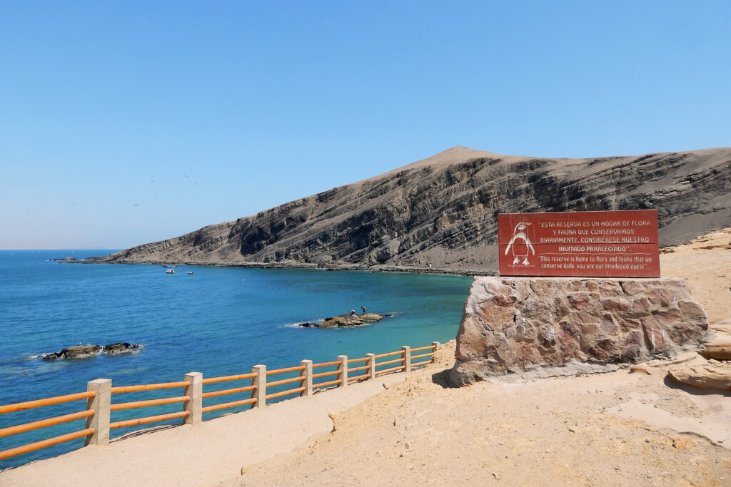 Paracas, Islas Ballestas & Huacachina