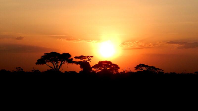 Afrika Thumbnail - 7 Reisetipps für Kenia