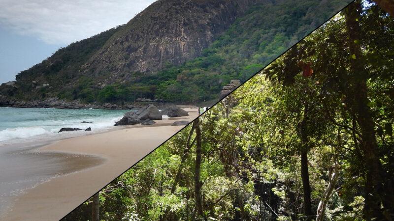Rio de Janeiro Umgebung - Prainha & Tijuca Nationalpark