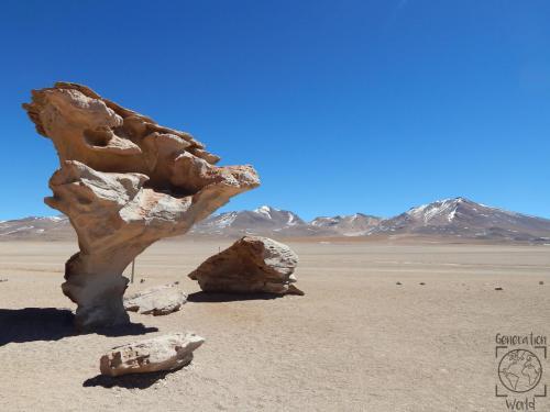 Bolivien - Arbol de Piedra