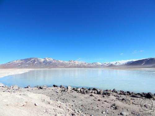 Bolivien - Laguna Blanca