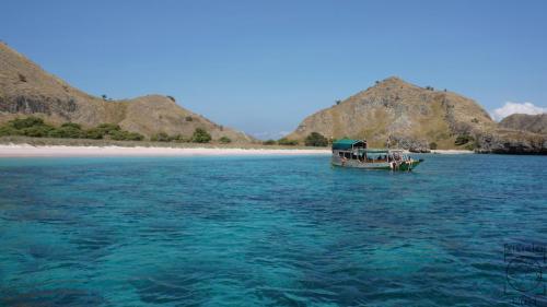 Indonesien - Pink Beach